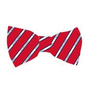 CHURCHILL POLY BOW TIE