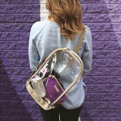 CLEAR SLING PACK